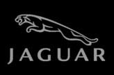 Jaguar Services